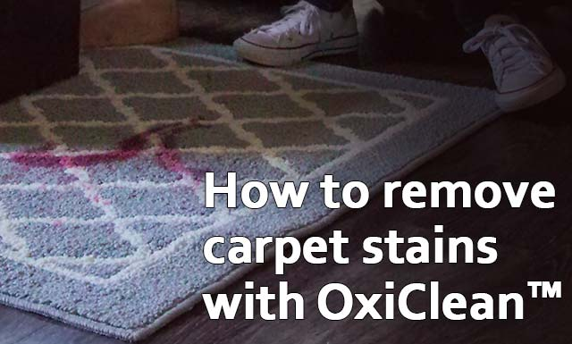 How To Get Stains Out Of Carpet Oxiclean Stain Solutions