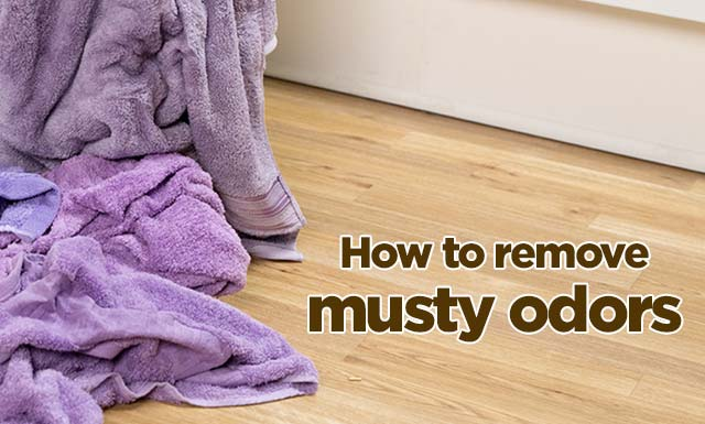 How To Remove Stains Oxiclean Stain Solutions