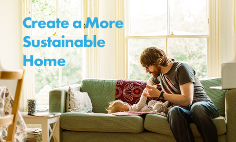 Create a more Sustainable Home